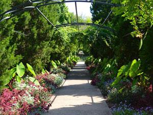 checkwood botanical garden