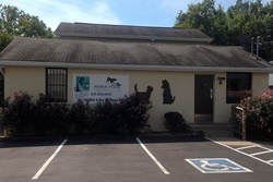 nashvile animal house vet clinic pet friendly vet in nashville tn